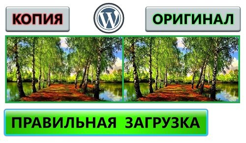 wordpress картинки